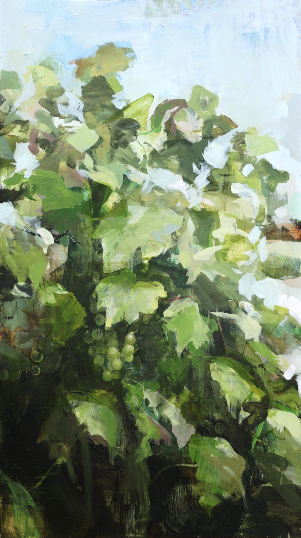 1525_grapevine.jpg